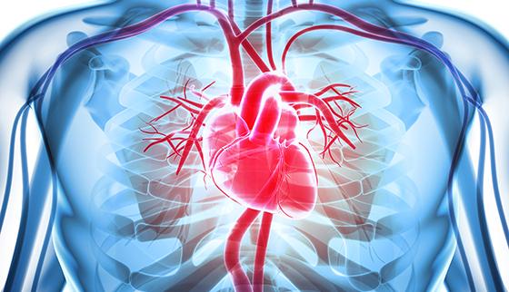 روماتيزم القلب